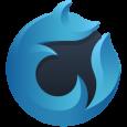 logo br_wf